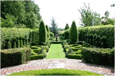 Французский сад 2